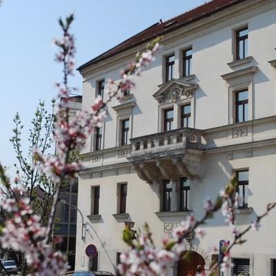 Prvá nedeľa v mesiaci zadarmo vstup do Múzea židovskej kultúry v Bratislave.